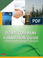 Dubai Company Formation Guide Sample