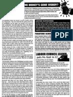 The Beacon newsletter spring 2010 pt2
