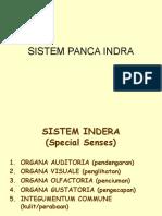 Sistem panca indera.ppt