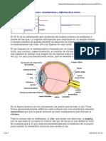 ojo humano.pdf