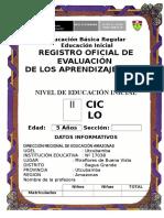 Registro Auxiliar de Evaluacion Inicial