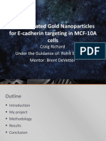 bioconjugated gold nanoparticles for e-cadherin targeting in mcf-10a
