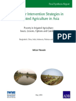 Pro-poor Intervention Strategies in IWMI-ADB Final