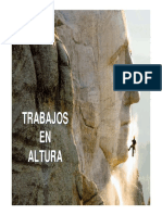 Trabajos en Altura Nivel I.pdf