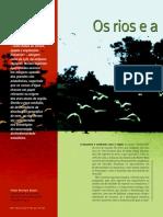 Os rios e a diversidade de aves na Amazônia