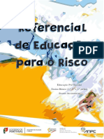 Referencial Risco