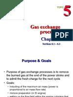 5 Gas Exchange Processes