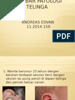 Gambar patologi - Edvan.pptx