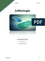 Grundlagen Zellbiologie