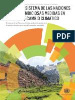 Apoyo del sistema de las Naciones Unidas a ambiciosas medidas en materia de cambio climático