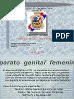 Aparato Reproductor Femenino Diapositiva (MEIVIS)