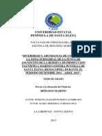 DIVERSIDAD Y ABUNDANCIA DE CORALES EN LA ZONA SUBMAREAL DE LA PUNTA DE ANCONCITO DE LA RESERVA DE PRODUCCIÓN FAUNÍSTICA MARINO COSTERA PUNTILLA DE SANTA ELENA (REMACOPSE), DURANTE EL PERIODO DICIEMBRE 2014 – ABRIL 2015