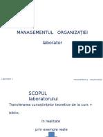 Laborator 1_Descrierea Organizatiei v.1