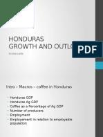 Coffee Growth in Honduras-3