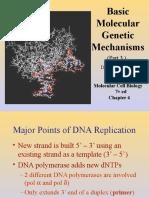 03. DNA Replication and Repair