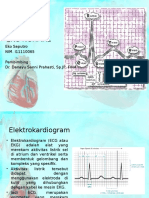 EKG NORMAL Referat Eko