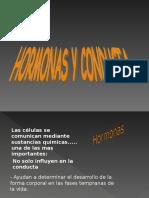 Exposicion de Hormonas y Conducta