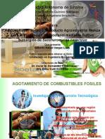 Produccion bioetanol a partir de melaza