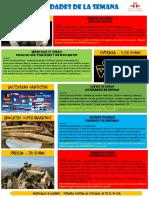 Actividades de la Escuela de Español 25 - 31 Enero