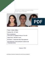 Bachelor thesis - Jolieke Hillen - 1575689.pdf