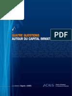Capital Immateriel 9VFnumFR 20080
