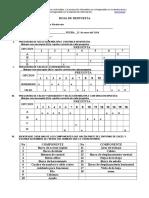 Refuerzo Informatica Entorno de Excel 6 Ju