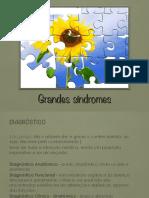 5 AULA - Anamnese Principais Síndromes Clínicas 2015-2 - resumido