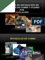 Expocicion Flotacion Sulfuros Cobre