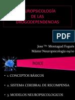 Neuropsicologia de Las Drogodependencias