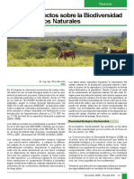 biodiversidad en los campos naturales