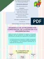 Desarrollo de un programa por competencias