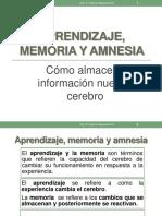 Cap5 NeuroComp Vaquerano.pdf