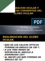 2.3 Realineamiento Del Globo Ocular y Anomalías Congénitas (EDWIN)