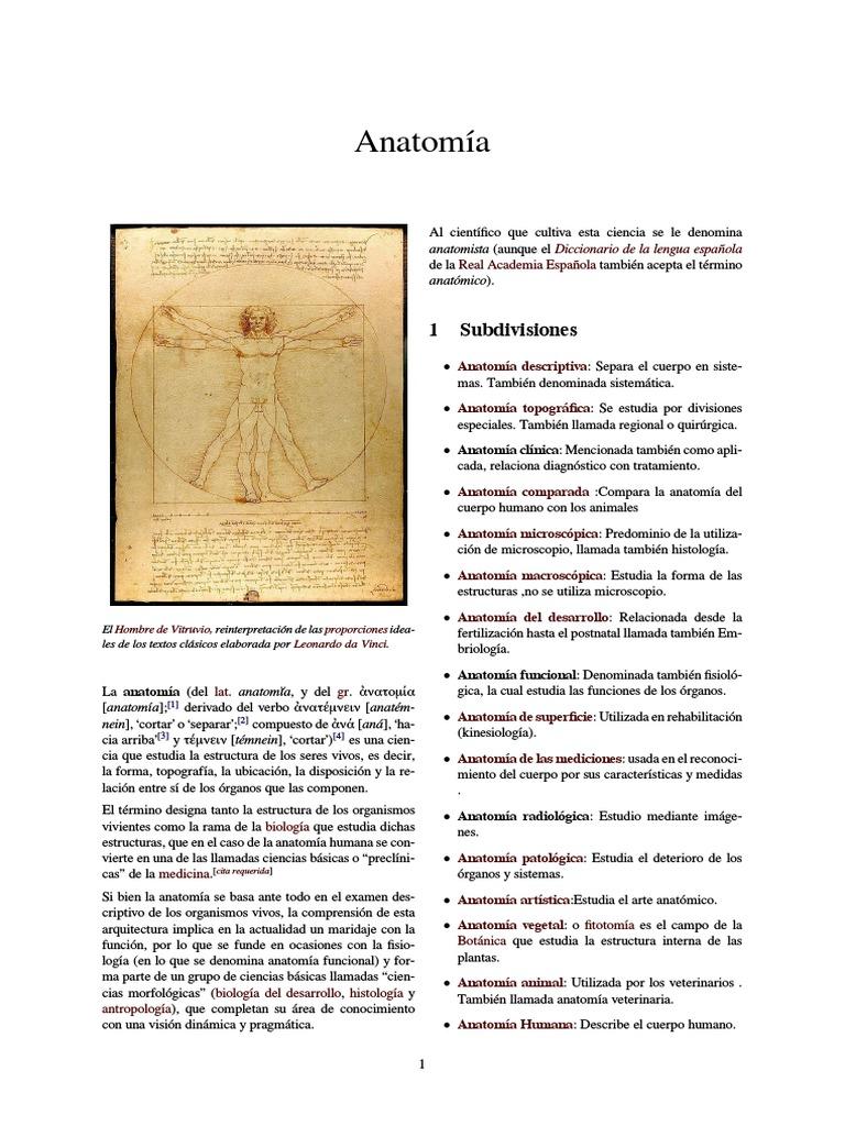 Anatomía WES