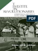 Accion revolucionaria travesty