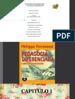 2.PEDAGOGIA DIFERENCIADA