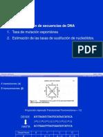EvolMol DNA