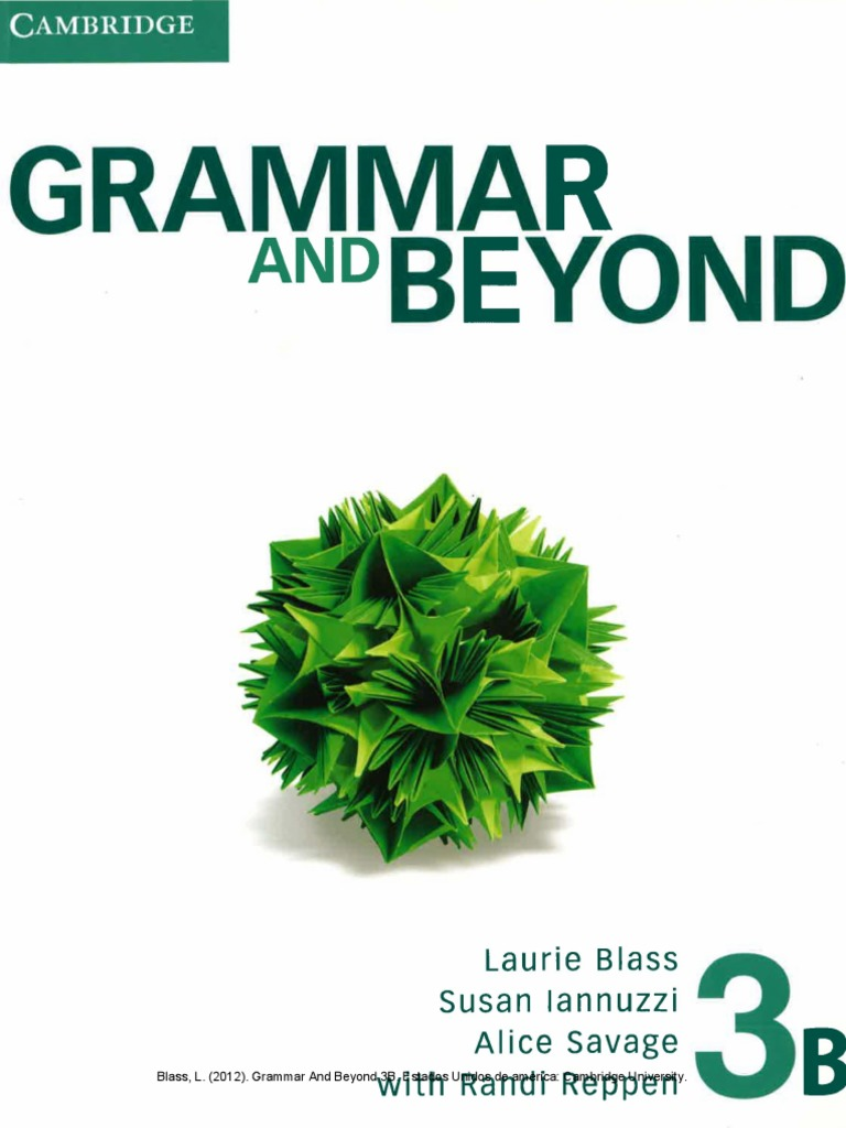 grammar and beyond 4 pdf
