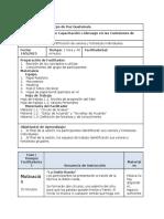 Plan de Sesión - Liderazgo en las Comisiones de ES (1)