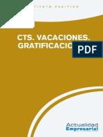 CTS - Vacaciones - Gratificaciones