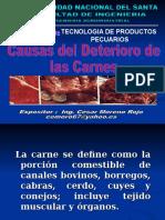 Presentacion2 Deterioro de Las Carnes