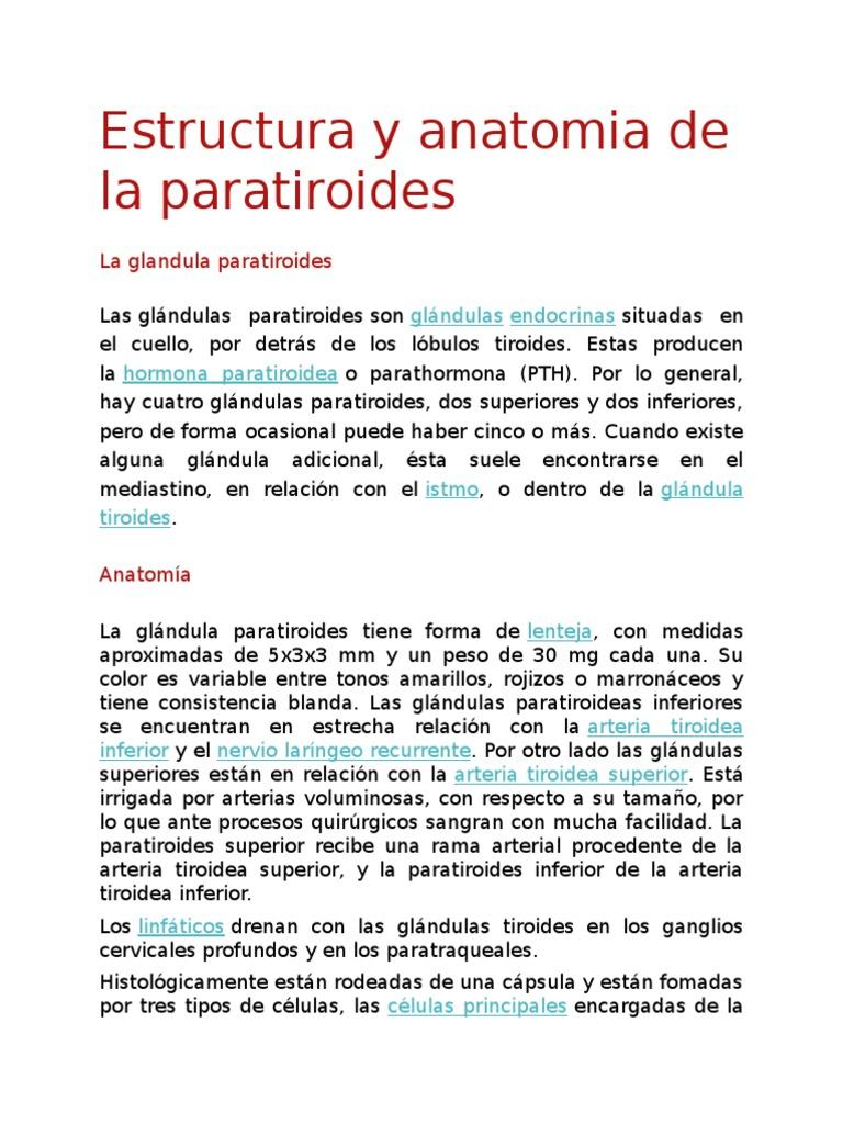 Estructura y anatomia de la paratiroides.docx