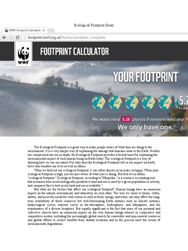 ecological footprint essay ecology earth