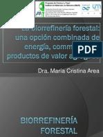 Biorrefineria Forestal