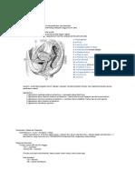 Ilmu Kebidanan Ed 2006 FKUI.pdf