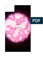 Parasitologi Picture