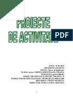 Proiect MATE