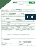 Manifiesto de Carga Export DBA