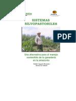 2006112717650_sistema Silvopastoril Manejo Sostenible Ganaderia
