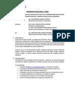 Informe Ingedadasdanieria